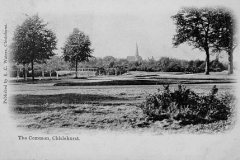 Chislehurst_Commons_from_SW