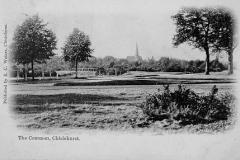 Chislehurst_Commons_from_SW