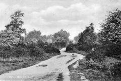 N4_0177_Chislehurst_Common_1910
