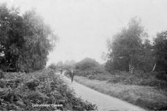 N4_0178_Chislehurst_Common_1912
