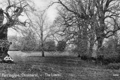 N4_0114_Farringtons_The_Limes_1911