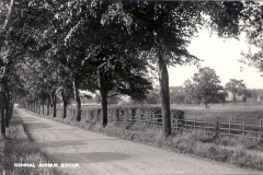 Kemnal_Road_north_1928
