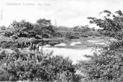 N4-0182_Chislehurst_Common_Overflow_Pond_1904