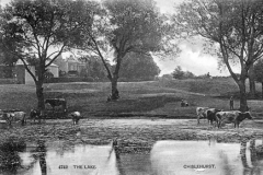 N4_0227_Prickend_Pond_the_Lake_1
