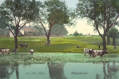 Prickend_Pond_1907i