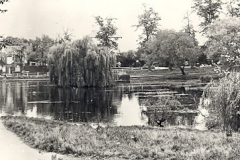 Prickend_Pond_1960ish