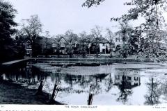Prickend_Pond_looking_east