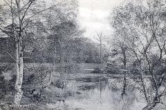 Rush_Pond
