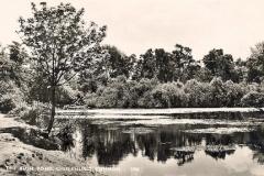 Rush_Pond_1953