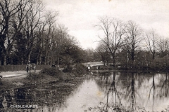 Rush_Pond_and_Ashfield_Lane_1914