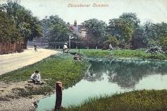 Webster_s_pond_undated