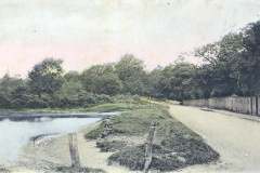 Websters_Pond_from_east