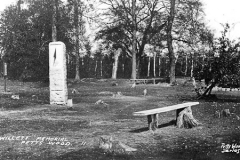 N5_0055_Willett_Memorial_Petts_Wood